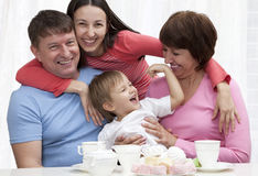 Extended Family Group Fun Royalty Free Stock Image