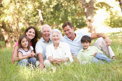 Extended Family Group In Park. Portrait Of Extended Family Group In Park Royalty Free Stock Photo