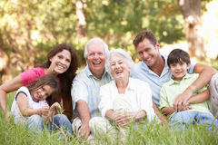 Extended Family Group In Park. Portrait Of Extended Family Group In Park royalty free stock image