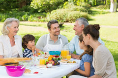 Extended family having lunch in the lawn Royalty Free Stock Image