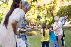 Extended family having tug of war. On a sunny day Royalty Free Stock Photo