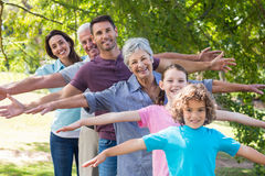 Extended family smiling in the park Royalty Free Stock Photo
