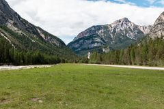 Extended Green Meadow and Conifers in Alps Mountains Scenery in Summer Time.  Royalty Free Stock Images