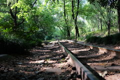 Extended steel rail in the shadow of forest. In the green forest, a longly steel railway extend to far away. Cover by shadow Stock Photos