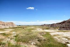 Extensão da grama de pradaria no parque nacional do ermo Imagens de Stock Royalty Free