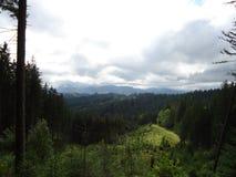 Extensões da floresta da montanha sob o céu imagens de stock royalty free
