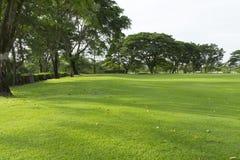 Extensamente campo de golf en día muy bonito en verano Foto de archivo