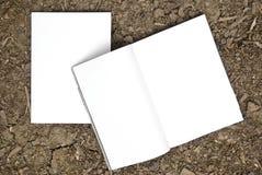 Extensión en blanco del compartimiento y parte delantera Imágenes de archivo libres de regalías