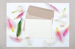 Extensión puesta lirio con las hojas verdes Foto de archivo libre de regalías