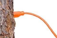 Extension cord in a tree trunk Royalty Free Stock Photo