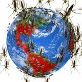 Extensiones del virus de Zika global stock de ilustración
