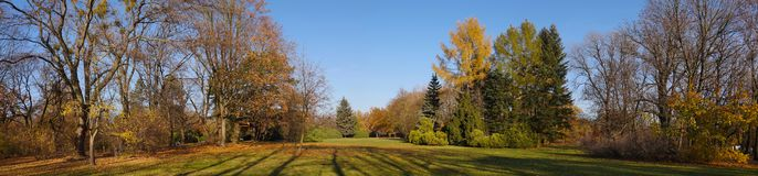 Diverse vegetation in the plant`s characteristic colors. Extensive panorama of the autumn park. royalty free stock photo