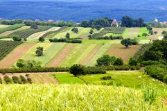 Extensive rural landscape. With patches of fields, orchards and hedges Stock Photo