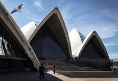 Exterior architecture detail of sydney opera house landmark in a Royalty Free Stock Photos