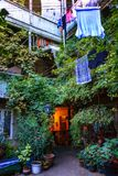 Exterior backyard of an old house with wood balcony and green wattled plant, liana, lichen wall in the old town of Tbilisi, Georgi. Tbilisi, Georgia - 8 October Stock Photography