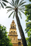 Exterior of The Cathedral and former Great Mosque of Cordoba Stock Photography