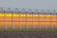 Exterior of a commercial greenhouse. Exterior facade of a commercial greenhouse in the Netherlands Stock Images