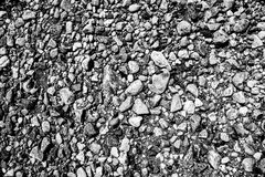 Black and white beach pebbles in Stamford, Connecticut Royalty Free Stock Image