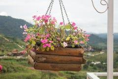 Exterior de adornamiento de la casa de la ejecución de la cesta colorida de la flor Imágenes de archivo libres de regalías