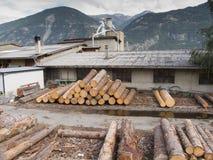 Exterior de madera de la fábrica del corte Fotografía de archivo libre de regalías