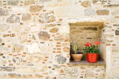Flowers inside grunge wall Royalty Free Stock Images