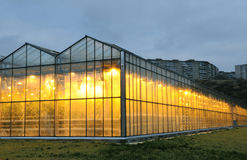 The exterior of glasshouse in the evening Royalty Free Stock Photo