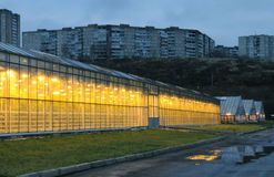 The exterior of glasshouses in the evening Stock Photo