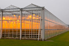 The exterior of a greenhouse Royalty Free Stock Photos