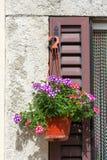 Exterior italiano de la casa adornado con las flores en un pote Imagen de archivo