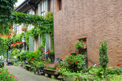 Exterior of old house with flowers and plants in Colmar. Stock Photography