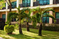 Resort house with green palms on lawn. Exterior shot of contemporary hotel building on resort territory, Thailand royalty free stock images