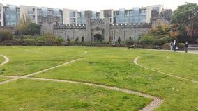 Dublin Castle stock photos