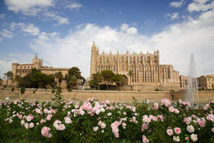 Palma Cathedral Stock Image