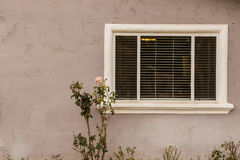 Exterior Window Stock Images