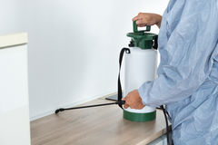 Exterminator Spraying Pesticide On Kitchen Counter Royalty Free Stock Photography