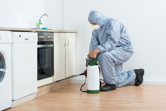 Exterminator Spraying Pesticide On Wooden Cabinet. Full length of exterminator spraying pesticide on wooden cabinet in kitchen stock photography
