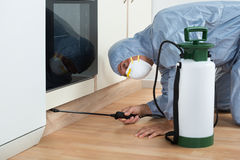 Exterminator Spraying Pesticide On Wooden Cabinet. Mature exterminator spraying pesticide on wooden cabinet of kitchen Stock Images