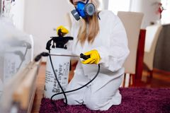 Woman exterminator working royalty free stock photos