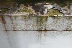Externe muren die de verkeerde schade van de kleurenoorzaak, Bovenmatige vochtigheid gebruiken stock foto