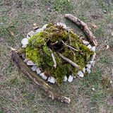 Extinct campfire lined with green moss Royalty Free Stock Image