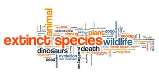Extinct species Stock Image