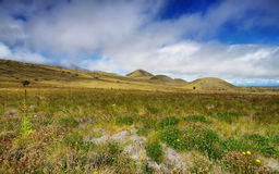 Extinct volcanic craters in background Royalty Free Stock Photo