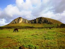 Extinct Volcano. Photo of an extinct volcano on Easter Island (rapa nui) with horses grazing in the foreground.  This was the place where the ancient Rapa nui Stock Photos