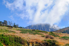 Extinct volcano,Jeju Halla Mountain, Eorimok Route. The view of Halla Mountain. Halla Mountain with the altitude of 1900 meters locates in Jeju, Korea, which is royalty free stock images