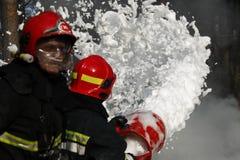 Extinga o incêndio florestal imagens de stock