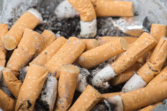 Extinguished cigarette closeup Royalty Free Stock Photography