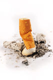 Extinguished Cigarette on White Background. Extinguished cigarette with ashes on a white background royalty free stock photo