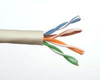 Extrémité d'un câble de réseau Photo libre de droits