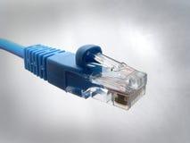 Extrémité de câble de réseau photos libres de droits