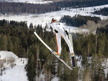 Extrémité de l'hiver photographie stock libre de droits